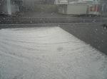 雪に降られ・・・